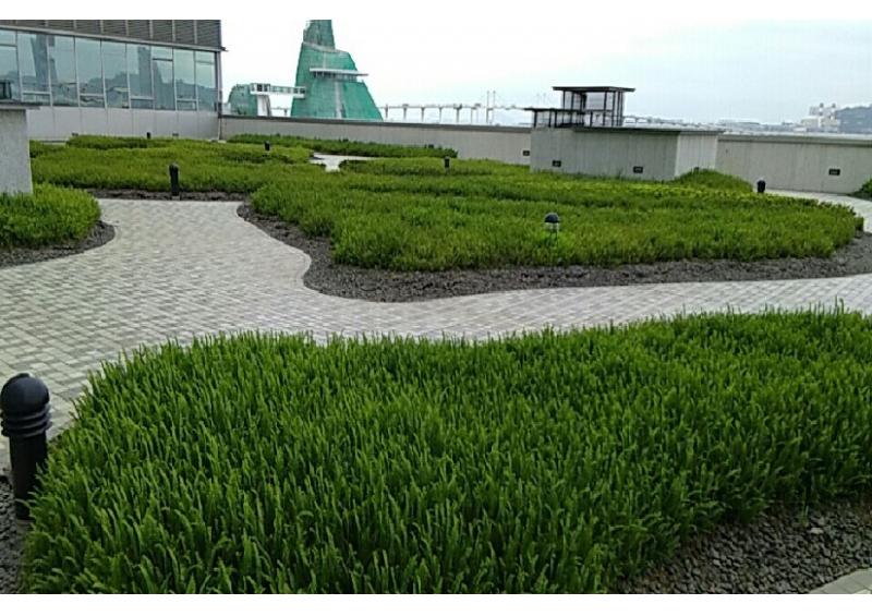 雙鑽-平台花園工程